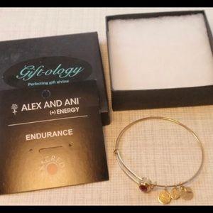 Alex and Ani Chakra Bracelet